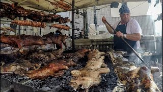 Huge Roasts, The Most Dangerous Cheese and More. Street Food Fair in Sardinia, Italy