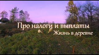 О налогах, огороде и щуке. // Жизнь в деревне.