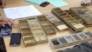 Почвоведение и инженерная геология. Практика