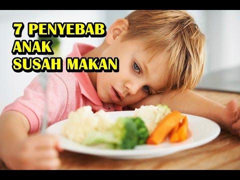 Video 7 Penyebab Anak Susah Makan