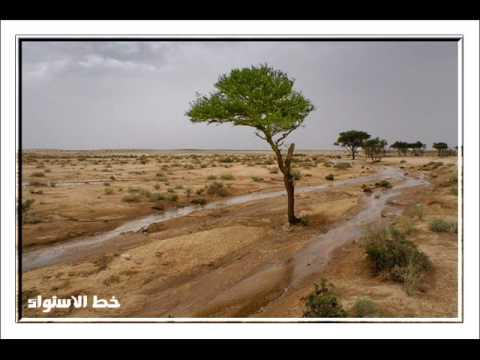 أفضل صور الغيوم والأمطار لأعضاء مكشات والبراري