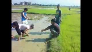preview picture of video 'IAAS Paklihawa Rice Transplantation in Agronomy Farm.'