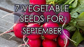 7 Vegetable Seeds For September 2020 | Sow Now For Early Crops!