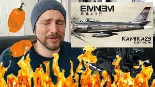 Fall - Eminem   Hot Pepper Music Review