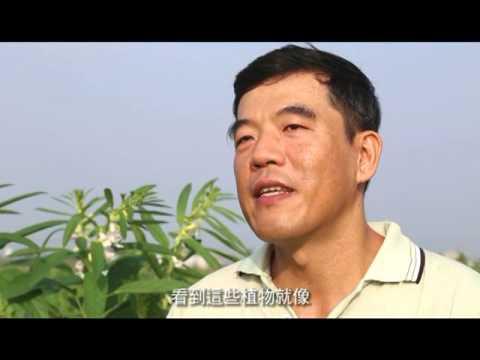臺南新農人