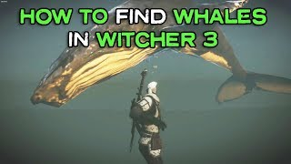 witcher 3 eyvind white whale
