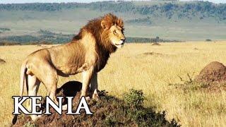 Kenia: Highlights in Afrika - Reisebericht