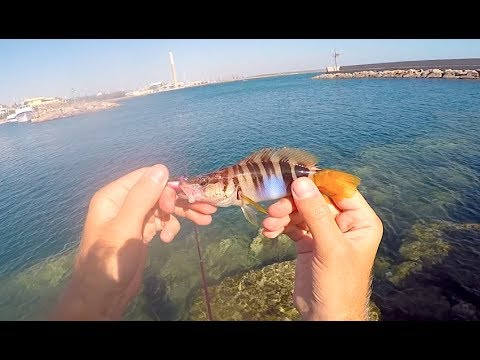 La pesca per il pezzo di ricambio