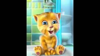 Videos  Engraçados kkkk