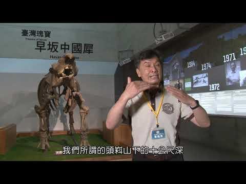【遨遊南博竹蜻蜓】臺南左鎮化石園區-化石館篇