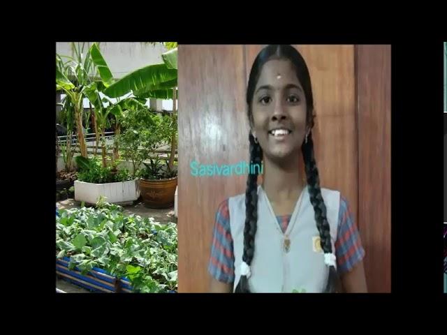 PVBM Pongal celebration 2020-21