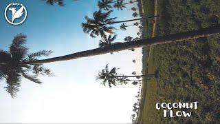 Fpv freestyle diwfpv - Coconut Flow
