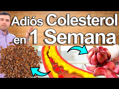 Cómo Bajar El Colesterol y Triglicéridos En 5 Pasos
