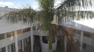 Аренда апартаментов на Тенерифе для отдыха