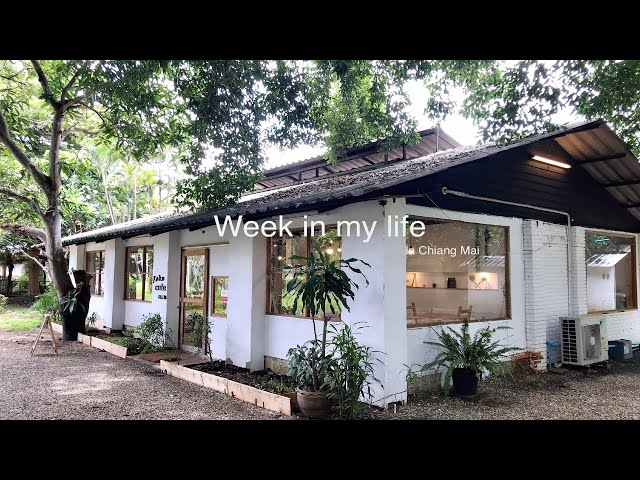 sub) 🇹🇭Chiang Mai Vlog | April Vlog | What I eat in a week? | exercise for week | gogo mart
