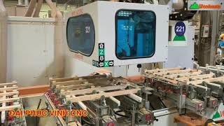 MÁY CNC MỘNG ÂM 10 Đầu Woodmaster Phay Router - khoan cnc - Lắc Mộng Âm siêu nhanh 👍👍👍