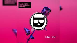 David Guetta, Martin Garrix & Brooks - Like I Do (Diego Rodríguez Remix)
