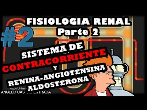 Tratamiento de la hipertensión GN Mesnik críticas