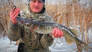 Проверка ЖЕРЛИЦ после ночи. ОСТАВИЛ ЖЕРЛИЦЫ НА НОЧЬ! Зимняя рыбалка на щуку.