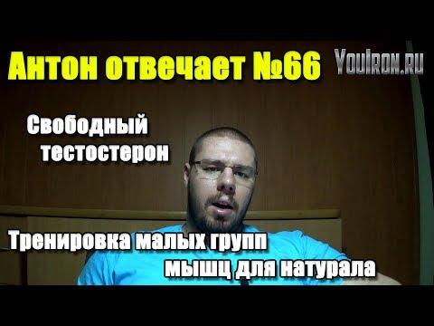 Антон Отвечает №66 СВОБОДНЫЙ ТЕСТОСТЕРОН ТРЕНИРОВКА МАЛЫХ МЫШЕЧНЫХ ГРУПП