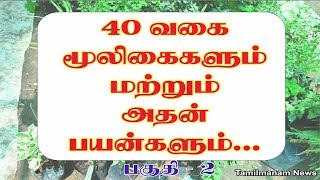 Herbs and their uses in tamil | 40 herbal plants and their uses Part 2