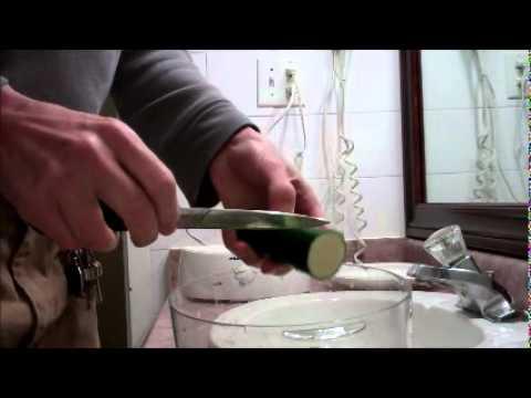 BLACK & DECKER HANDY STEAMER: cooking the