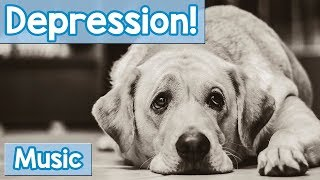 Music for Depressed Dogs! 15 Hours of Healing Pet Therapy Music for Your Depressed Dog or Puppy!