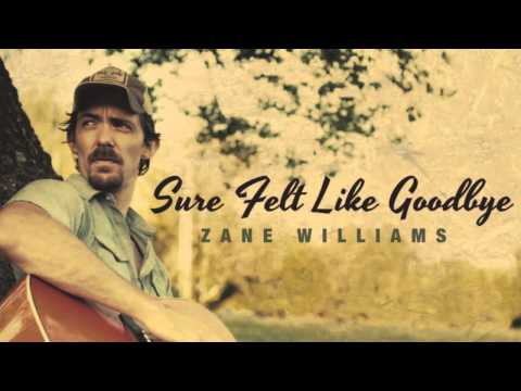 Zane Williams - Sure Felt Like Goodbye