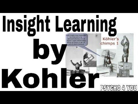 Insight learning by kohler, kofka, wirthemier