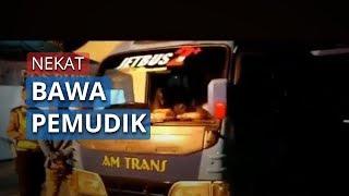 12 Kendaraan Travel Gelap Ditahan Polres Jakbar karena Nekat Bawa Pemudik