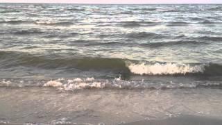 Азовское море (Арабатская стрелка). 2 мин. - шум моря (1080p HD)