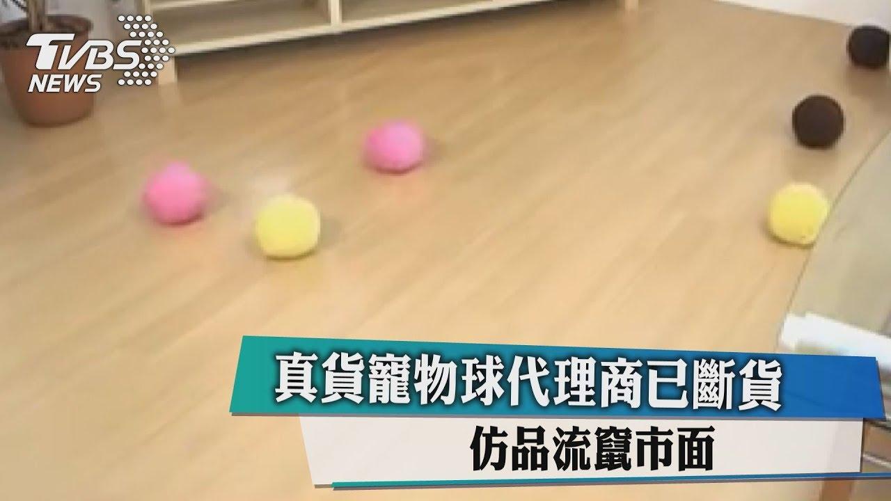 真貨寵物球代理商已斷貨 仿品流竄市面