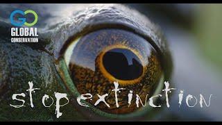 Stop Extinction