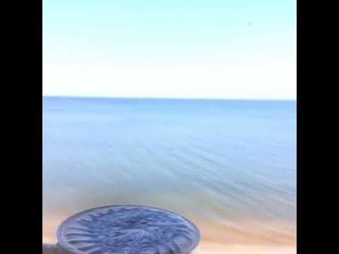Фото видеогид Куршская коса