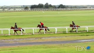The Curragh: Training in the Heartland of Ireland