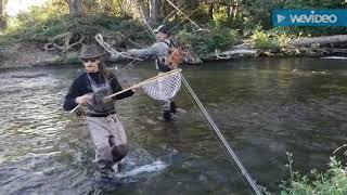Putah creek California fly fishing