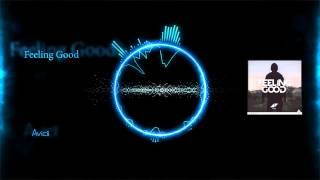 Avicii - Feeling Good [HD Visualized] [Lyrics in Description]