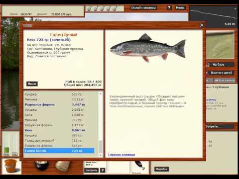 Русская Рыбалка 3.99 Голец белый