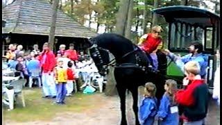 Reünie familie Lapien, Oisterwijk 1991