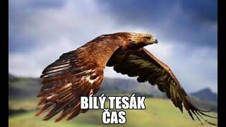 Video BÍLÝ TESÁK - Čas (Official Video)