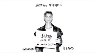Sorry   Justin bieber  Skrillex ft Blood HD 320 kbps   FREE DOWNLOAD