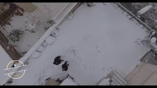 Winter Kamatero Forest | Snowy Forest | Dji Phantom 4 | 4K drone Video