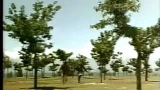 aye sanam aaj ye kasam khaye Lata -Talat   - YouTube