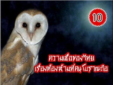 ความคิดเห็น phlebologist Nefedev Fedor