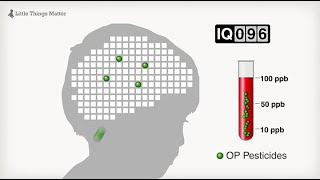 Little Things Matter: The Impact of Toxins on the Developing Brain