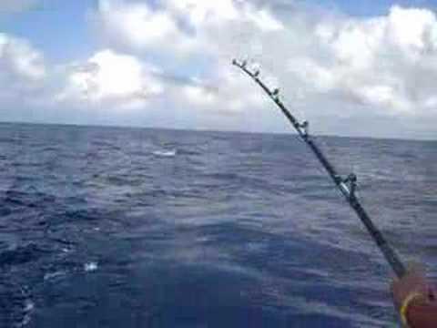 La pesca in espresso è 5