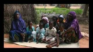 preview picture of video 'CLN Cooperative Laitière de Niamey   seconda parte'