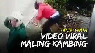 Fakta-fakta Viral Video Maling Kambing di Siang Bolong yang Tertangkap CCTV Warga