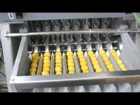 Industrial Freshly Squeezed Lemon Fruit Juice Machine
