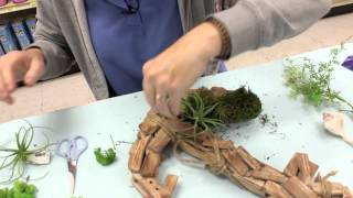Crankin Out Crafts -ep412 Decorating Driftwood & More Samples